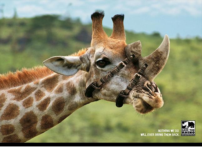 реклама из Африки