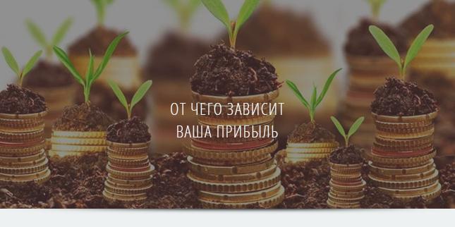 Где источник Вашей прибыли?