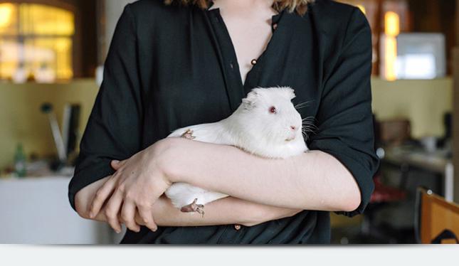 Зачем нужно животное в офисе?